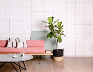 White subway tile wall with tall green plant beside pink sofa and marble coffee table at nail salon Glasgow